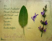 Salbei von Franziska Rullert