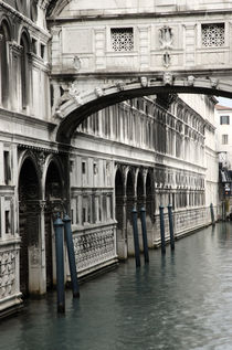 The Bridge of Sighs by Martin Williams