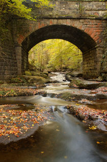Bridge over May Beck by Martin Williams