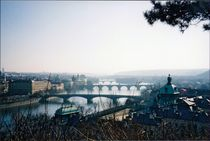 Prague's Many Bridges by Kelsey Horne