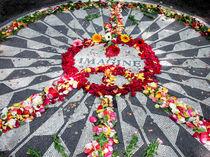 John Lennon Memorial in Central Park by Kelsey Horne