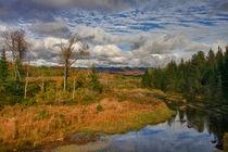 View From Adirondack Loj Road von David DesRochers