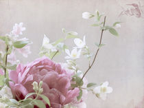 Blumengruß von Franziska Rullert