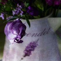 lila Hauch by Franziska Rullert