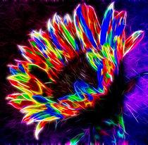 Sunflower Rainbow von Fiona Messenger