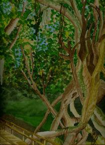 Pfad in den Everglades von Marie Luise Strohmenger