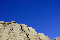 Rock Climber in The Joshua Tree National Park  von Kelsey Horne