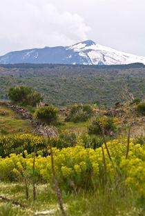 Parco Naturale di Etna - Sicilia by captainsilva
