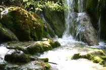 Naturbad von Corinna Schumann