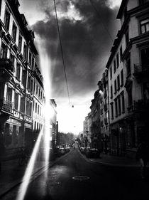 lens hood von Rosemarie Rosenroth