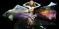 Lavender by Rozalia Toth