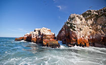 Ballestas Islands by Dmitry Samsonov