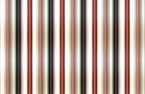 Vertical Lines by macrobioticos