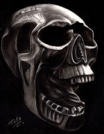 Skull Study by Todo Brennan