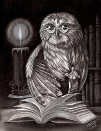 Book Owl by Todo Brennan
