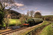 Pannier Tank on the South Devon Railway by Rob Hawkins