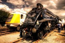 Streamlined Power  von Rob Hawkins