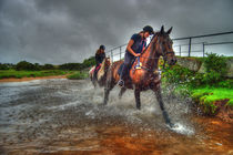 Water-horses-hdr