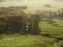 The Shire / Das Auenland by starsongstudio