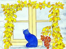 Blue cat von michaba