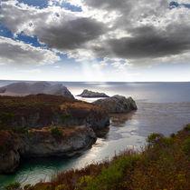 Point Lobos near Carmel California USA by Douglas Pulsipher