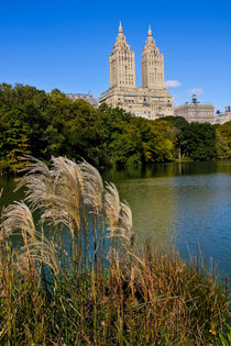 Im Central Park by gfischer