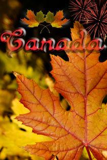Ties of Love Canada Day von JET Adamson