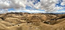 Velvet Hills in Seddon von Stas Kulesh
