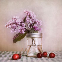 cherries and lilac by Priska  Wettstein