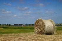 Rundballen - round bales by ropo13