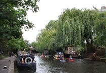 CANAL von lushmontana