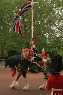 Trooping the Colour von Ron Ella