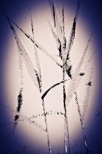 Water Reed Digital art von David Pyatt