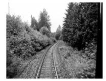 Riding the Rails by Sheila Morgan