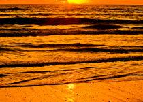 Golden Sunrise by Roger Wedegis