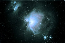 Orionnebel - M42 - Orion Nebula by virgo