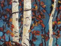 Birches, Birken. by Monika wisberger