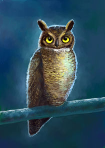 Night Owl von freeminds