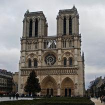 Notre Dame de Paris by David Pringle