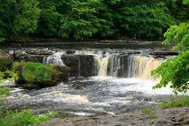 Aysgarth-falls0090