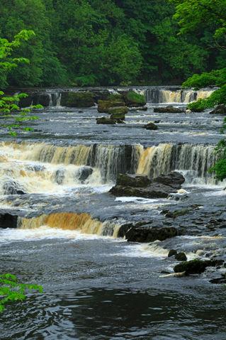 Aysgarth-falls0091