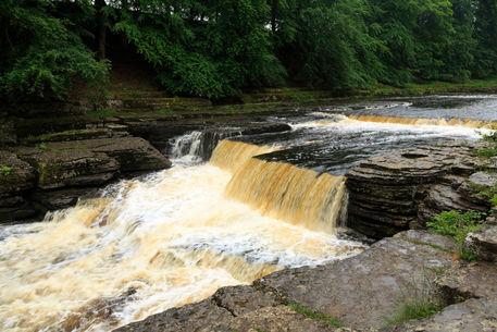Aysgarth-lower-falls0096