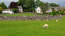 Ravenstonedale, Cumbria von Louise Heusinkveld