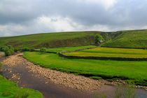 Swaledale, the River and a Meadow von Louise Heusinkveld