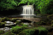 West-burton-falls0088