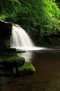 West Burton Falls, Wensleydale von Louise Heusinkveld
