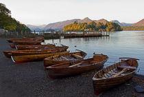 Keswick Boat Landing von David Pringle