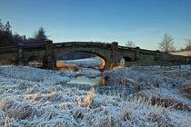Bridge Over River Wansbeck von David Pringle