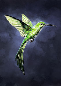 Green Hummingbird von freeminds