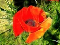 Fractalius Poppy by sharon lisa clarke